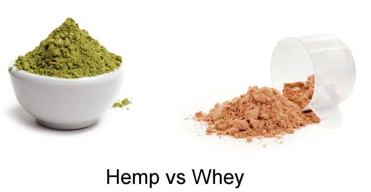 Hemp-protein-VS-Whey-protein.jpg